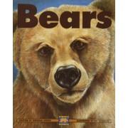 Bears by Deborah Hodge