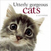 Utterly Gorgeous Cats by Pam Brown