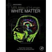 MRI Atlas of Human White Matter by Kenichi Oishi