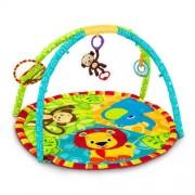 Bright Starts/Kids II 9194 Palestrina Gioco, Multicolore