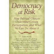 Democracy at Risk by Stephen Macedo