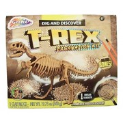 Dig And Discover Dinosaur Excavation Kit ~ T Rex (8 Bones, 1 Clay Block, Tools And Instructions; Ages 6+)