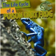 The Life Cycle of a Poison Dart Frog by Anna Kingston