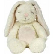 Iepurasul luminos Glow Cuddle Bunny