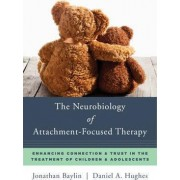 The Neurobiology of Attachment-focused Therapy Enhancing Connection & Trust in the Treatment of Children & Adolescents by Jonathan Baylin