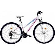 Bicicleta MTB DHS Terrana 2922 - model 2017