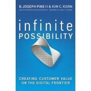 Infinite Possibility by B. Joseph Pine