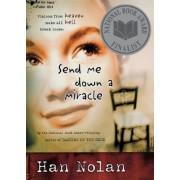 Send Me Down a Miracle by Han Nolan