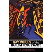 Gay Voices of the Harlem Renaissance by A. B. Christa Schwarz