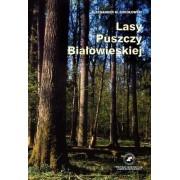 Lasy Puszczy Białowieskiej