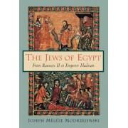 The Jews of Egypt by Joseph Meleze Modrzejewski