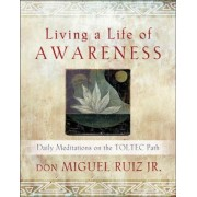 Living a Life of Awareness: Daily Meditations on the Toltec Path, Paperback