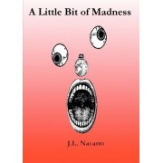 A Little Bit of Madness by J L Navarro