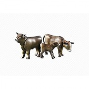 2 Brown Cows with Calf