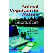 Animal Cognition in Nature by Russell P. Balda