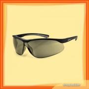 Arctica S-119 Sunglasses