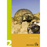 Hermann's Tortoise, Boettger's and Dalmatian Tortoises: Testudo boettgeri, hercegovinensis and hermanni (Chelonian Library, Volume 2) by Holger Vetter