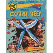 At Home in a Coral Reef