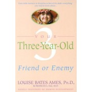 Your Three Year Old by L Ames
