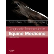 Diagnostic Techniques in Equine Medicine by Frank G. R. Taylor