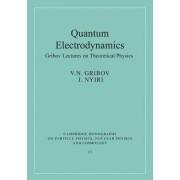 Quantum Electrodynamics by V. N. Gribov