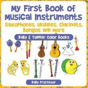 My First Book of Musical Instruments by Baby Professor