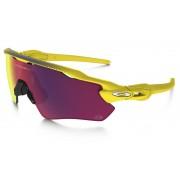 Oakley Radar EV Path fietsbril geel 2017 Sportbrillen