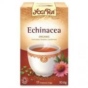 YOGI TEA (herbatki) HERBATKA ECHINACEA BIO (17 x 1,8 g) - YOGI TEA