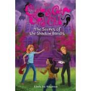 The Secret of the Shadow Bandit by Linda Joy Singleton