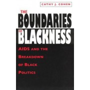 The Boundaries of Blackness by Cathy Cohen