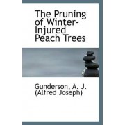 The Pruning of Winter-Injured Peach Trees by Gunderson A J (Alfred Joseph)