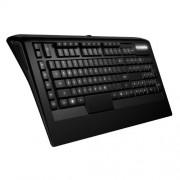 KBD, SteelSeries Apex Raw, Gaming, Black