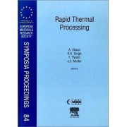 Rapid Thermal Processing by A. Slaoui