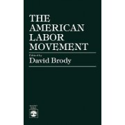 The American Labor Movement by David Brody