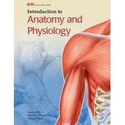 Introduction to Anatomy and Physiology by Susan J Hall