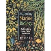 Exploring Marine Biology by Paul A. Haefner