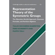 Representation Theory of the Symmetric Groups by Tullio Ceccherini-Silberstein