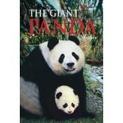 Giant Panda by Fang Min