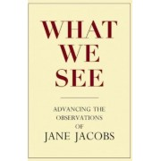 What We See by Stephen A Goldsmith