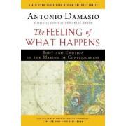 The Feeling of What Happens by Professor of Neurology Antonio R Damasio