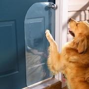 Protectie antizgarieturi pentru usa
