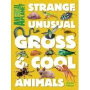Animal Planet Strange, Unusual, Gross & Cool Animals by Animal Planet