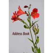 Address Book by Blank Books 'n' Journals