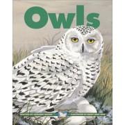 Owls by Adrienne Mason