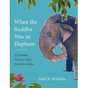 When The Buddha Was An Elephant by Mark W. McGinnis