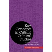 Key Concepts in Critical Cultural Studies by Linda Steiner