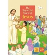 Beautiful Story of Jesus by Maite Roche