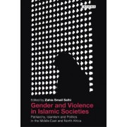 Gender and Violence in Islamic Societies by Zahia Smail Salhi