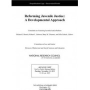 Reforming Juvenile Justice by Committee on Assessing Juvenile Justice Reform