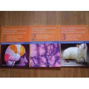 Aspecte Neurofiziologice Ale Proceselor De Memorare Si Invatare Vol.1-3 - Alin-stelian Ciobica